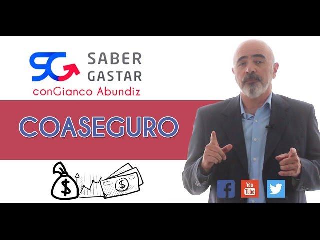 ¿Qué es el Coaseguro?
