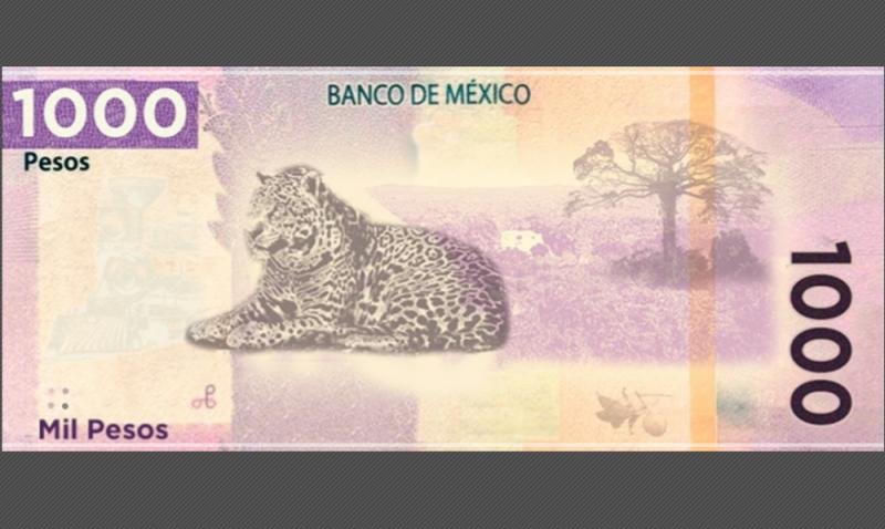 Ponen en circulación un nuevo billete de mil pesos