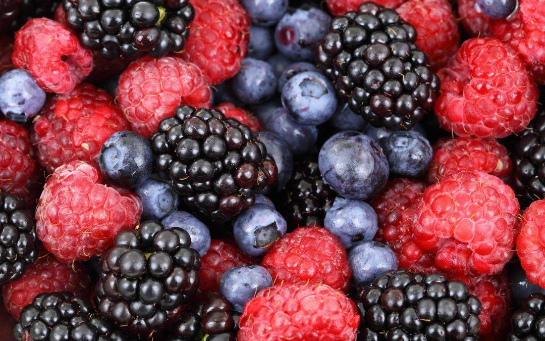 Inició Agricultura la celebración del Año Internacional de las Frutas y Verduras (AIFV) 2021