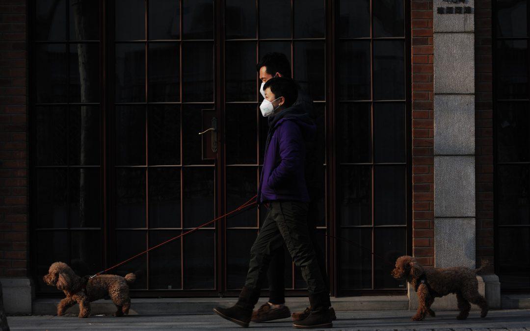 Impacto de la pandemia de COVID-19 en el mercado laboral mexicano y en el SAR